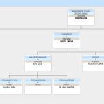 È la procedura per la gestione del fascicolo elettronico e la creazione dell'organigramma aziendale.